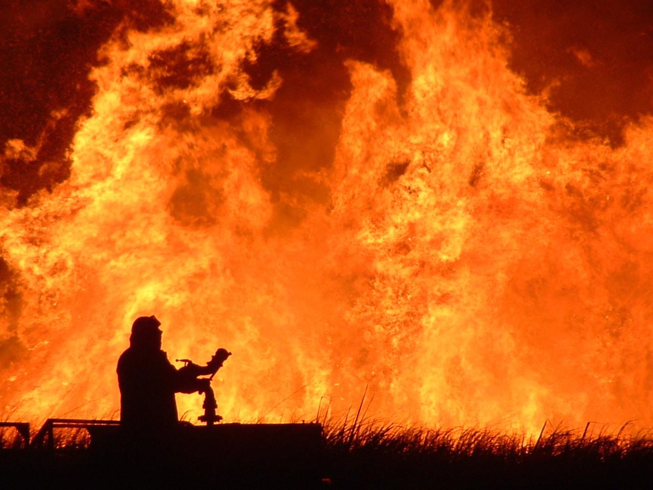 L'Italia brucia: incendi dal Triestino alla Sicilia. Avellino, forestale muore tra le fiamme