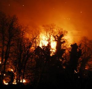 Sicilia in fiamme: incendi a Palermo e dintorni. Salvati 30 scout sull'Etna