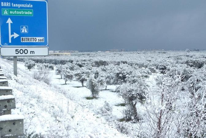 Maltempo, il gelo si è spostato al Centro-Sud: nevica dall'Abruzzo alla Puglia, dalla Basilicata alla Calabria