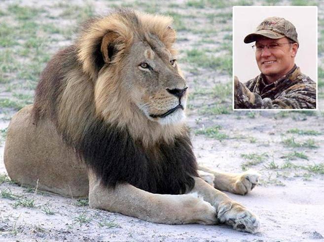 L'uccisione di Cecil, lo Zimbabwe chiede l'estradizione per Walter Palmer. Dopo il leone voleva uccidere un elefante. Il dentista chiude lo studio